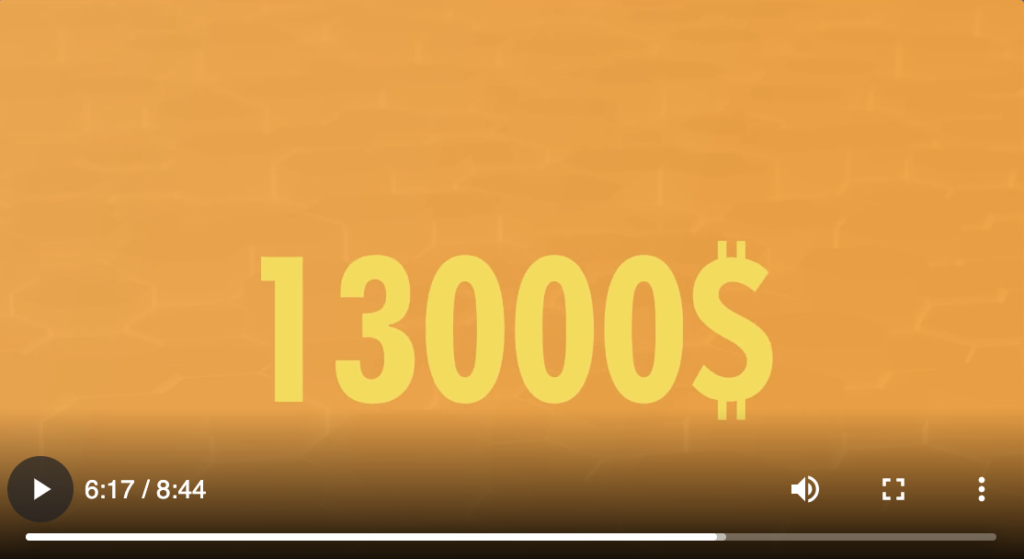 Bitcoin system video